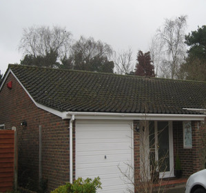 how to clean moss from roof uk
